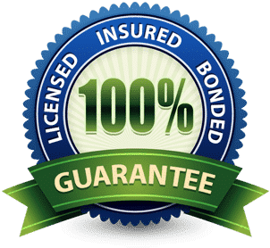 Licenses insured and bonded